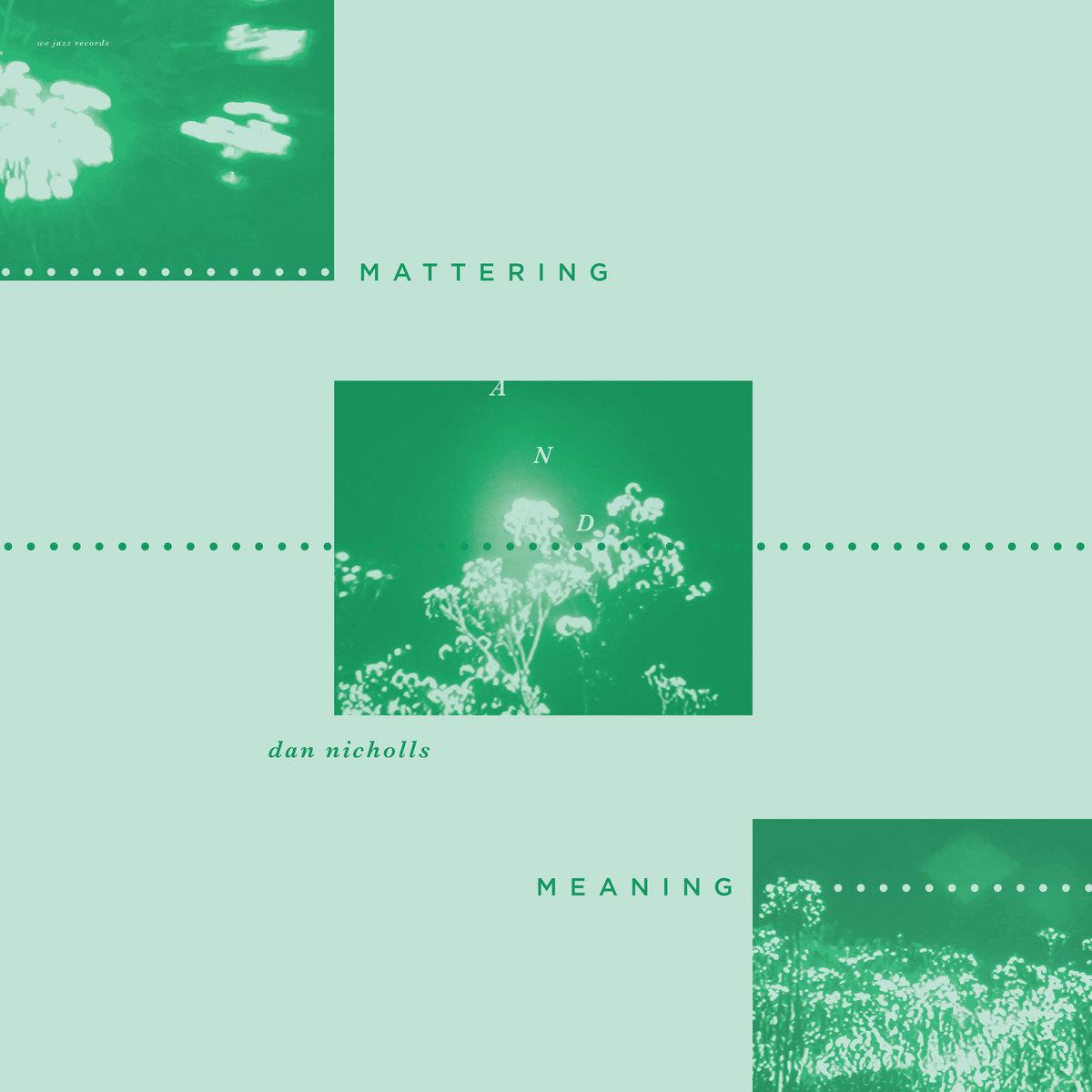 Dan Nicholls | Mattering and Meaning